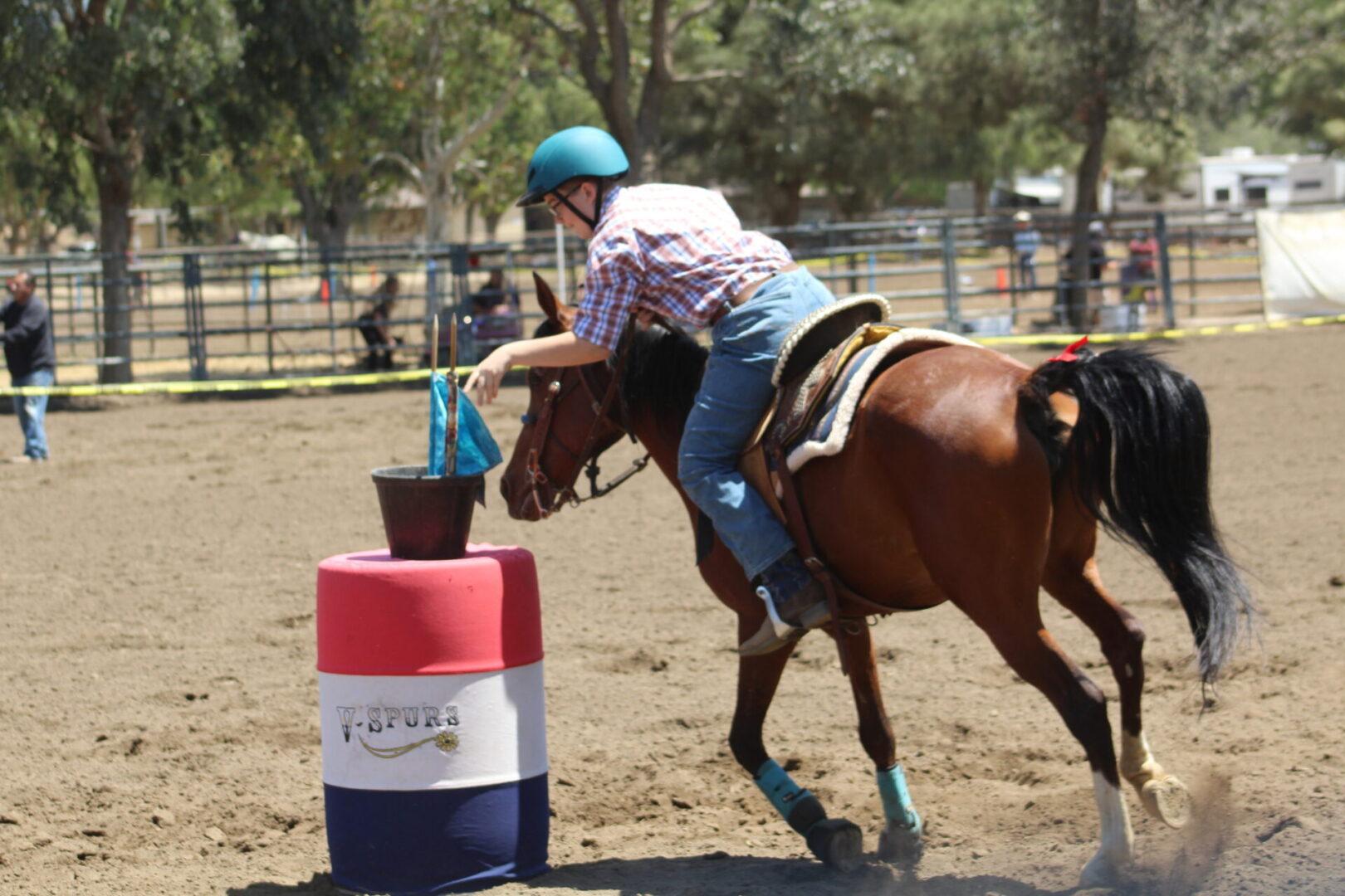 A person riding a brown horse